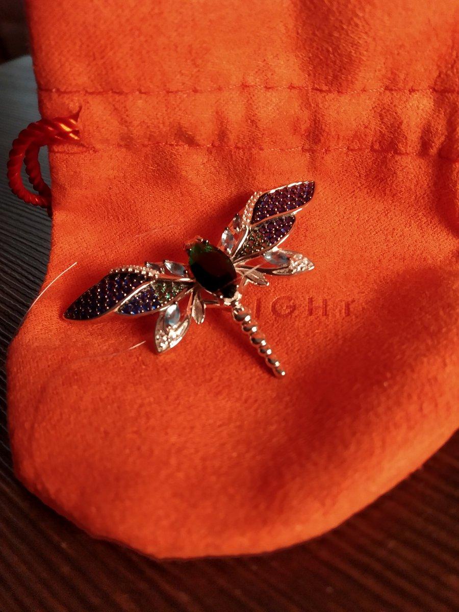 Серебряная стрекоза