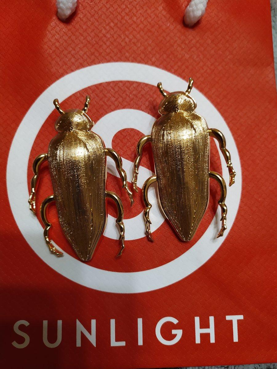 Красивые жуки