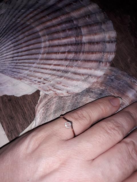 Нежное сверкающее кольцо