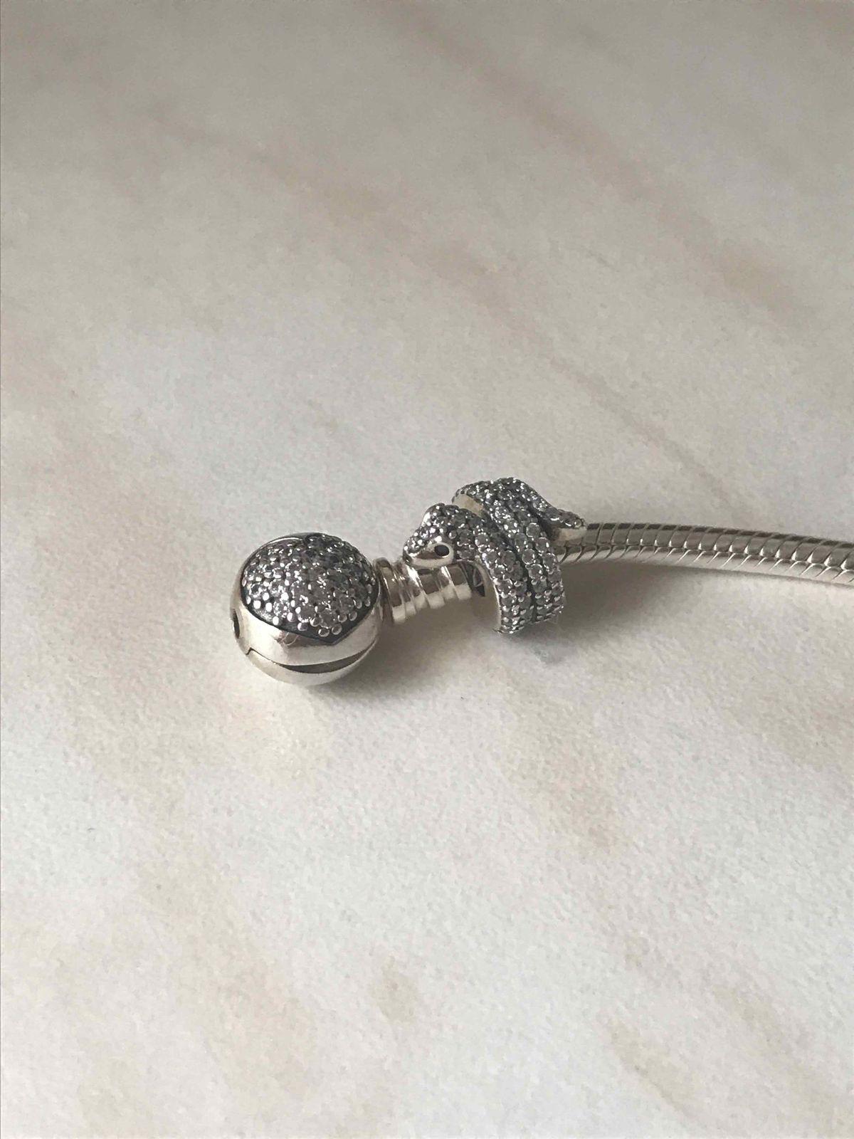 Серебряная змейка